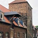 Steinhof-